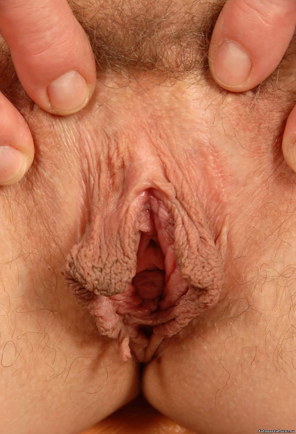 Самый маленький половой орган фото 15 фотография